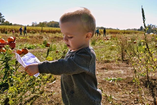 enfant qui récolte des légumes