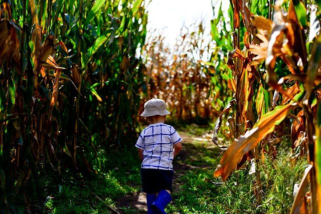 enfant dans un champs