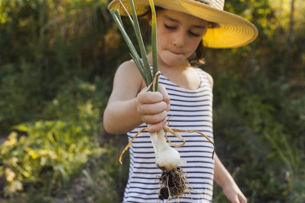 enfant qui tient un oignon frais